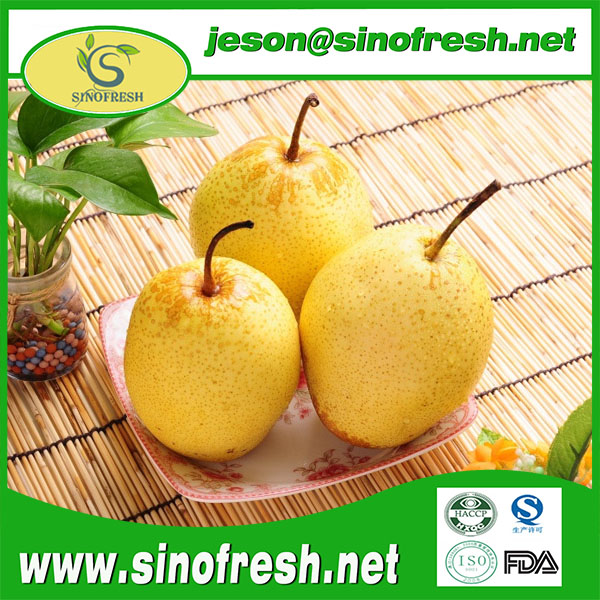 Fresh Snow Pear